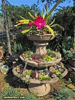 Caldwell Specialty - Cactus Fountains